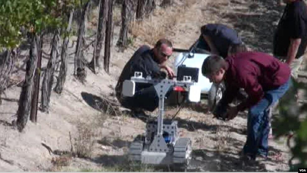Robotë në fermat bujqësore