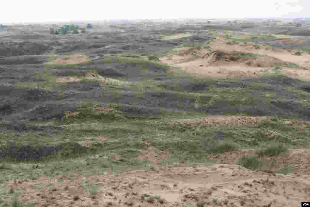 Алёшковские пески являются самым крупным песчаным массивом на территории Украины. Ничего подобного нет ни в одной европейской стране, которая находится на европейском материке. Ближайшие от Алёшковских песков – пустыни в России, которая расположена