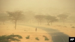 Rainfall in the African Sahel declined more than anywhere else in the world in the period of recorded measurements, causing increased aridity, as evidenced by this dust storm in Senegal.