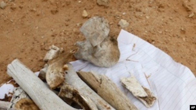 Bone fragments at the site which is thought to be a possible mass grave near to Abu Salim prison in Tripoli, Libya, Sunday, Sept. 25, 2011.