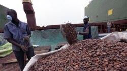تلاش برای صدور قطعنامه سازمان ملل جهت استفاده از نيروی نظامی در ساحل عاج