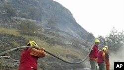 消防人員上星期五在智利的一個國家公園努力扑滅一場大火