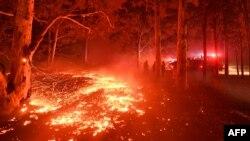 Požari u državi Novi južni Vels