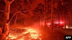 آسٹریلیا میں تقریباً ڈھائی کروڑ ایکٹر جنگلات میں آگ بھڑک رہی ہے۔