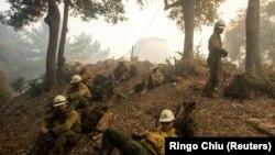 حکام کے مطابق 1660 فائر فائٹرز آگ پر قابو پانے کی کوششوں میں ہیں۔