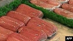 Ikan laut dingin, terutama salmon dan sardin, merupakan sumber terbaik asam omega-3. (Foto: dok).