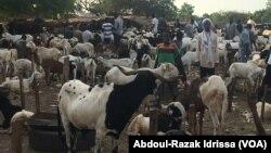Sur le marché de Niamey, au Niger, le 19 août 2017. (VOA/Abdoul-Razak Idrissa)