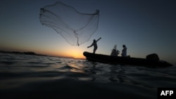 An Emirati fisherman throws his net near Mirfa, near the coast of the capital Abu Dhabi on April 19, 2019.