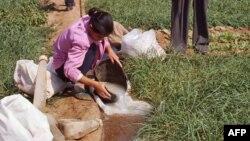 中国农民大量使用氮肥造成土壤酸化