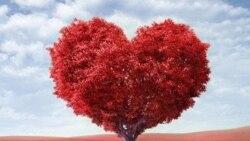 Saint Valentin kera bi Djouma Fevrier 14, 2020. VOA-Alidou Ouedrago.