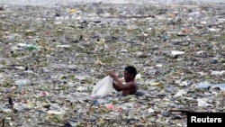 A man collects plastic and other recyclable materials from debris in the waters of Manila Bay after tropical storm Saola hit the Philippine capital, July 30, 2012.