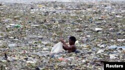 Một luật sư về môi trường gọi Vịnh Manila là một cái 'bồn cầu tiêu'