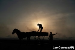 A woman gestures as a man unloads his horse-drawn cart of the catch brought by fishermen at Bargny beach, some 35 kilometers (22 miles) east of Dakar, Senegal, Thursday April 22, 2021.