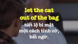 Học tiếng Anh qua phim ảnh: Let the cat out of the bag - Phim My sister's keeper (VOA)