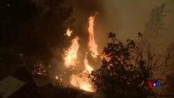 加州野火或將持續到9月 國際援軍火線助戰