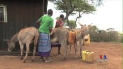 Coca Cola, Local Women at Forefront of Kenya Water Initiative