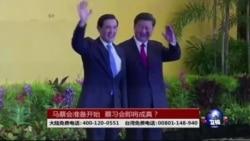 海峡论谈:马蔡会准备开始,蔡习会即将成真?