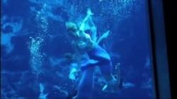 Эти живые…русалки