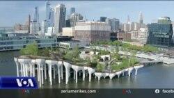 """Qyteti i Nju Jorkut krenohet me """"ishullin e vogël"""""""