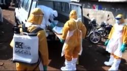 'Ebola Ekonomik Krize Yolaçabilir'