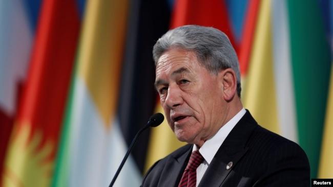 新西兰副总理兼外长彼得斯(资料照片)