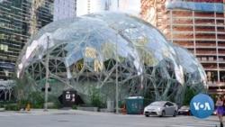 A Peek Inside Amazon Headquarters