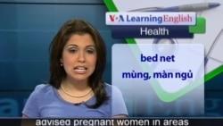 Anh ngữ đặc biệt: Pregnancy Malaria Prevention (VOA)