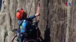 Fiziki məhdudiyyətli alpinist ayın idmançısı seçilib