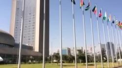 Malaammaltummaan Dhibee Ardii Afrikaa Dhuunfate: Itti Aantuu Muummee Barreessaa Tokkumma Mootummootaa