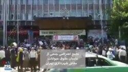 تجمع اعتراضی به کشتار سگها مقابل شهرداری تهران