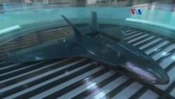 Computadora que cultiva drones militares