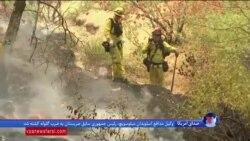 اعلام وضعیت اضطراری در کالیفرنیا به دنبال آتش سوزیهای گسترده