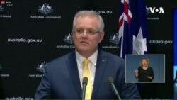 澳大利亞總理稱新冠病毒最有可能來自中國野生動物市場