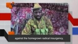 News Words: Insurgency