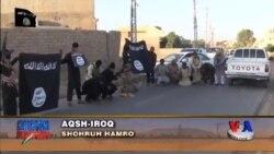 AQSh Iroqqa yana qo'shin kiritmoqda - US/Iraq