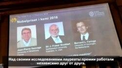 Француз Жан-Пьер Соваж, американец Джеймс Фрейзер Стоддарт и голландец Бернард Феринга получили Нобелевскую премию по химии