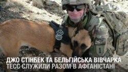 Американський військовий став господарем собаки, з якою служив в Афганістані. Відео
