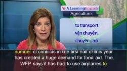 Anh ngữ đặc biệt: WFP/Aviation Food Aid (VOA)