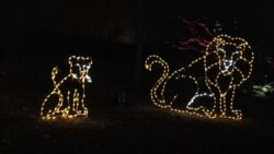 Animal Sculptures Light Up National Zoo for Christmas