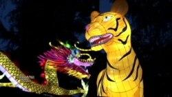 ჩინური ფარნების ფესტივალი კალიფორნიაში