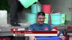 VOA连线:冰桶挑战,是募捐还是作秀?