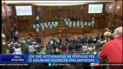 LDK, Vetëvendosje në përpjekje të afrimit të qëndrimeve