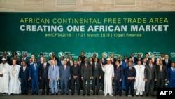 非洲聯盟舉辦高峰會議(2018年3月21日)