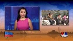 Texas: Otboqarlar yig'ini