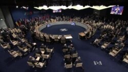 Trump's Challenge: The Powerful Women of NATO