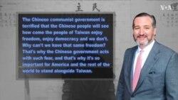 德克萨斯州联邦参议员泰德·克鲁兹(共和党):提出《台湾主权象征法》