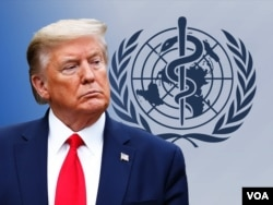 President Donald Trump is pictured with the World Health Organization logo in this photo illustration.