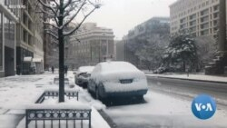 Partial US Government Shutdown Enters Week 4