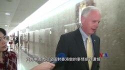 美國國會參議員約翰遜評論香港反對《逃犯條例》示威