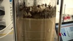 威士忌生物燃料技术